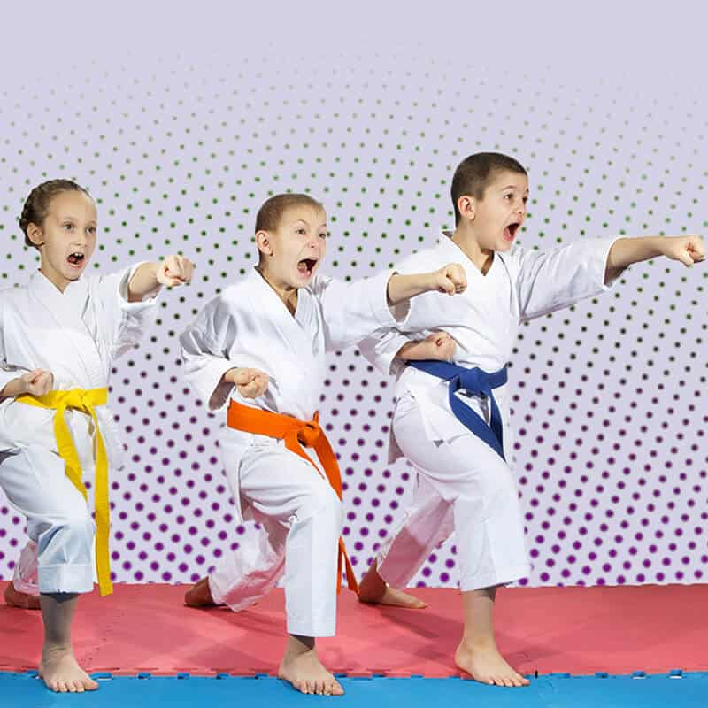 Martial Arts Lessons for Kids in Arvada CO - Punching Focus Kids Sync
